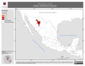 Mapa ilustrativo de Peromyscus polius (Ratón). Distribución potencial.