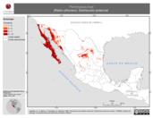 Mapa ilustrativo de Peromyscus truei (Ratón piñonero). Distribución potencial.