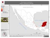 Mapa ilustrativo de Peromyscus yucatanicus (Ratón). Distribución potencial. La proyección citada, es exclusiva para el diseño de esta imagen.