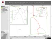 Mapa ilustrativo de Plantaciones forestales del ejido Pachuitz, municipio Hopelchén, Campeche