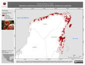 Mapa ilustrativo de Phoenicopterus ruber (flamenco americano) residencia permanente. Distribución potencial.