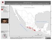 Mapa ilustrativo de Phrynosoma asio (Lagartija cornuda gigante). Área de distribución potencial. La proyección citada, es exclusiva para el diseño de esta imagen.
