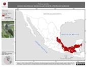 Mapa ilustrativo de Pionus senilis (loro corona-blanca) residencia permanente. Distribución potencial.