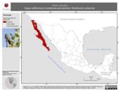 Mapa ilustrativo de Pipilo crissalis (toquí californiano) residencia permanente. Distribución potencial.