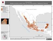 Mapa ilustrativo de Piranga flava (tángara encinera) usando sitios con y sin clima extremo. Distribución Potencial