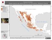 Mapa ilustrativo de Piranga ludoviciana (tángara capucha roja) usando sitios con y sin clima extremo. Distribución Potencial