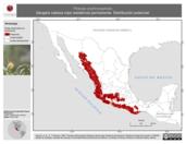 Mapa ilustrativo de Piranga erythrocephala (tángara cabeza roja) residencia permanente. Distribución potencial.