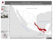 Mapa ilustrativo de Piranga leucoptera (tángara ala blanca) residencia permanente. Distribución potencial.