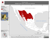 Mapa ilustrativo de Piranga rubra (tángara roja) verano. Distribución potencial.