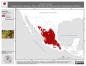 Mapa ilustrativo de Pituophis deppei (Culebra sorda mexicana). Área de distribución potencial. La proyección citada, es exclusiva para el diseño de esta imagen.