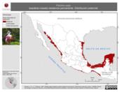 Mapa ilustrativo de Platalea ajaja (espátula rosada) residencia permanente. Distribución potencial.