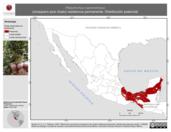 Mapa ilustrativo de Platyrinchus cancrominus (mosquero pico chato) residencia permanente. Distribución potencial.