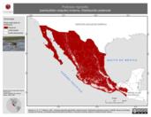 Mapa ilustrativo de Podiceps nigricollis (zambullidor orejudo) invierno. Distribución potencial.
