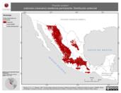 Mapa ilustrativo de Poecile sclateri (cabonero mexicano) residencia permanente. Distribución potencial.