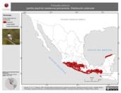 Mapa ilustrativo de Polioptila albiloris (perlita pispirria) residencia permanente. Distribución potencial.