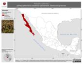 Mapa ilustrativo de Polioptila californica (perlita californiana) residencia permanente. Distribución potencial.