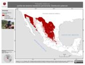 Mapa ilustrativo de Polioptila melanura (perlita del desierto) residencia permanente. Distribución potencial.