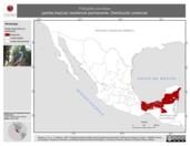Mapa ilustrativo de Polioptila plumbea (perlita tropical) residencia permanente. Distribución potencial.