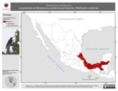 Mapa ilustrativo de Psarocolius montezuma (oropéndola de Moctezuma) residencia permanente. Distribución potencial.