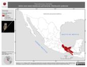 Mapa ilustrativo de Pseudoscops clamator (búho cara clara) residencia permanente. Distribución potencial.