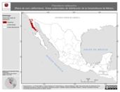 Mapa ilustrativo de Pseudacris cadaverina (Rana de coro californiana). Área de distribución potencial. La proyección citada, es exclusiva para el diseño de esta imagen.