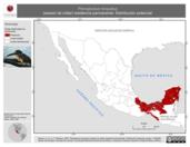 Mapa ilustrativo de Pteroglossus torquatus (arasari de collar) residencia permanente. Distribución potencial.