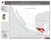 Mapa ilustrativo de Pulsatrix perspicillata (búho de anteojos) residencia permanente. Distribución potencial.
