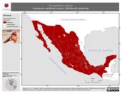 Mapa ilustrativo de Pyrocephalus rubinus (mosquero cardenal) verano. Distribución potencial.