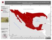 Mapa ilustrativo de Pyrocephalus rubinus (mosquero cardenalito) en época de invernación del Hemisferio Norte. Distribución potencial.