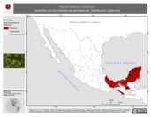 Mapa ilustrativo de Ramphocaenus melanurus (soterillo picudo) residencia permanente. Distribución potencial.