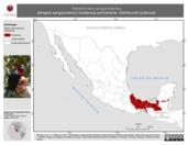 Mapa ilustrativo de Ramphocelus sanguinolentus (tángara sanguinolento) residencia permanente. Distribución potencial.