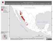 Mapa ilustrativo de Rana magnaocularis (Rana del noroeste-mexicano). Área de distribución potencial. La proyección citada, es exclusiva para el diseño de esta imagen.