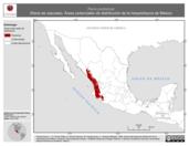 Mapa ilustrativo de Rana pustulosa (Rana de cascada). Área de distribución potencial. La proyección citada, es exclusiva para el diseño de esta imagen.