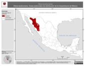 Mapa ilustrativo de Rana tarahumarae (Rana tarahumara). Área de distribución potencial. La proyección citada, es exclusiva para el diseño de esta imagen.