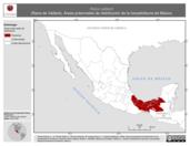 Mapa ilustrativo de Rana vaillanti (Rana de Vaillant). Área de distribución potencial. La proyección citada, es exclusiva para el diseño de esta imagen.