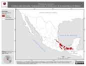 Mapa ilustrativo de Rhadinaea decorata (Culebra café adornada). Área de distribución potencial. La proyección citada, es exclusiva para el diseño de esta imagen.