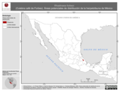 Mapa ilustrativo de Rhadinaea forbesi (Culebra café de Forbes). Área de distribución potencial. La proyección citada, es exclusiva para el diseño de esta imagen.