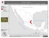 Mapa ilustrativo de Rhadinaea gaigeae (Culebra café de Gaige). Área de distribución potencial. La proyección citada, es exclusiva para el diseño de esta imagen.