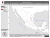 Mapa ilustrativo de Rhadinaea montana (Culebra café de Nuevo León). Área de distribución potencial. La proyección citada, es exclusiva para el diseño de esta imagen.
