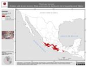 Mapa ilustrativo de Rhadinaea taeniata (Culebra café de pino encino). Área de distribución potencial. La proyección citada, es exclusiva para el diseño de esta imagen.