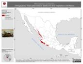 Mapa ilustrativo de Rhinoclemmys pulcherrima (Tortuga pinta). Área de distribución potencial. La proyección citada, es exclusiva para el diseño de esta imagen.