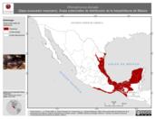 Mapa ilustrativo de Rhinophrynus dorsalis (Sapo excavador mexicano). Área de distribución potencial. La proyección citada, es exclusiva para el diseño de esta imagen.