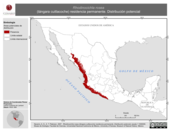 Mapa ilustrativo de Rhodinocichla rosea (tángara cuitlacoche) residencia permanente. Distribución potencial.