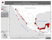 Mapa ilustrativo de Rynchops niger (rayador americano) invierno. Distribución potencial.