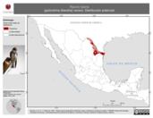 Mapa ilustrativo de Riparia riparia (golondrina ribereña) verano. Distribución potencial.