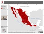 Mapa ilustrativo de Salpinctes obsoletus (chivirín saltaroca) residencia permanente. Distribución potencial.