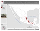Mapa ilustrativo de Scaphiodontophis annulatus (Culebra añadida guatemalteca). Área de distribución potencial. La proyección citada, es exclusiva para el diseño de esta imagen.