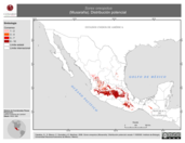 Mapa ilustrativo de Sorex oreopolus (Musaraña). Distribución potencial.