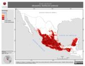 Mapa ilustrativo de Sorex saussurei (Musaraña). Distribución potencial.