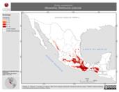Mapa ilustrativo de Sorex veraepacis (Musaraña). Distribución potencial.